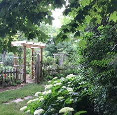 Garden at The Garden Diary blog