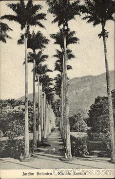 Jardim Botanico in Rio de Janeiro Brazil | vintage postcards