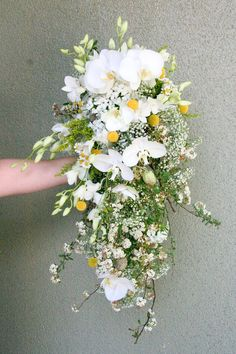 Beautiful mix of orchids, billy balls, babes breath....Baby Breath Wed 4