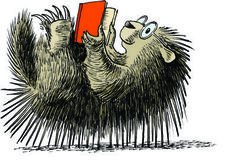 Porcupine Reading