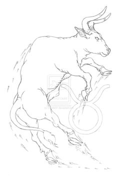Taurus Bull Tattoo Sketch On Copy