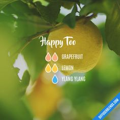 Happy Too - Essential Oil Diffuser Blend