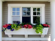 window box ideas | Window Box Flowers for Sun