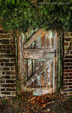 Forgotten Doorway - St Mary's Hospital Grounds, Phoenix Park, Dublin