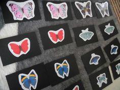 【Butterfly matching cards】 蝶々のペアリング ~ おうちモンテ~   そらいあんぐる