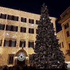 #christmaslights #alberodinatale #palazzovalentino #sobrieta #natalearoma #christmastime #roma #italy #rome #romacapoccia
