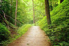Spring Hollow Trail @ Hampton Hills Metro Park