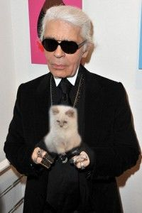 Everything You Need To Know About Karl Lagerfeld's Cat, Choupette