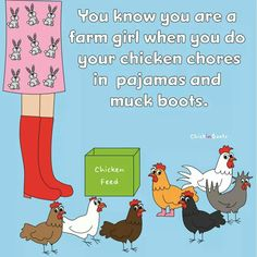 the truth Chicken Signs, Chicken Humor, Chicken Lady, Chicken Feed, Chicken Coops, Funny Chicken, Chicken Ideas, Chicken Scratch, Pet Chickens