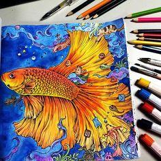 when water color and color pencil unite.