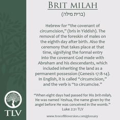 TLV Glossary Word of the Day: Brit Milah #tlvbible