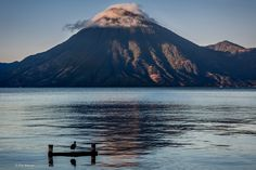 A lone bird admires the sunrise over Lake Atitlan