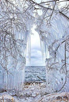 Frozen trees in Lake Baikal Siberia, Russia