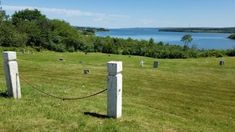 The cemetery is one of the last remnants of a historic Black community called Brinley Town that formed around 1785. Back then, 65 families lived on about 75 acres of land, making it the second largest Black Loyalist settlement in the province of Nova Scotia (Canada)....