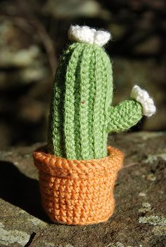 This one is definately at the top of my to-do list...I had crocheted a cacti and it was in a little clay pot but it was recently sacrificed by one of the cats here.  I think I'll make the flowers red.