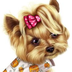 Image in little-pumpkin-yorkie album Cute Little Puppies, Cute Dogs And Puppies, Chien Yorkshire Terrier, Yorkie Clothes, Cute Animals Images, Medication For Dogs, Yorky, Digital Art Girl, Little Pumpkin