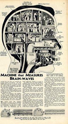 Brain Supplements Buyer's Guide - Consumer Advisor Online