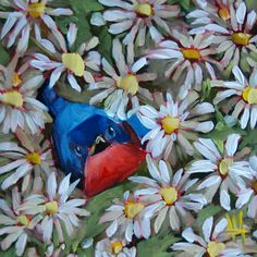 Bluebird in the Daisies original bird and flower oil painting by moulton prattcreekart