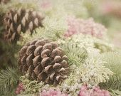 Christmas Wall Decor, Nature Photography, Pine Cone Picture , Rustic Decor, Brown and Green Photograph