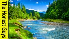 9 HOURS NATURE SOUNDS: RIVER IN THE SHIRE. Relaxation (NO MUSIC) Sleep, ...