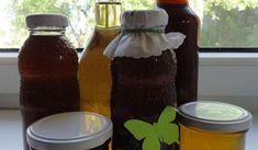 Jak na výrobu domácích bylinkových sirupů | recepty Jed, Syrup