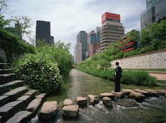 This river was once buried under highway in Seoul, but has since been restored.