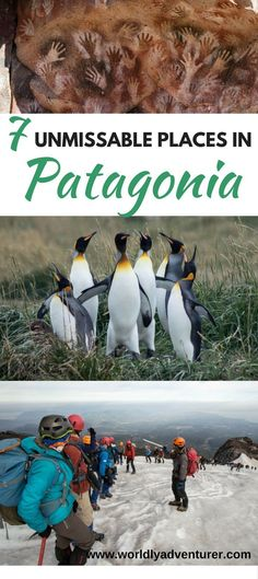 A colony of singing penguins. Millennia-old cave paintings. Rugged, granite spires piercing the sky. Discover the spectacular wilderness that is Patagonia with this guide to the seven unmissable places to visit.