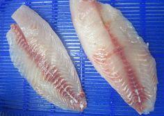 Tilapia fillet, skinless, boneless, shallow skin, fat on, normal trimmed,  Size: 3 – 5 oz, 5 – 7 oz, 7 – 9 oz