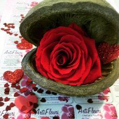 """Noix Buddha et sa ROSE éternelle """"ROUGE AMOUR"""" Fleur stabilisée http://www.artifleurs-fleurs-artificielles.com/boutique/fleurs-naturelles-preservees/grande-rose-a-offrir-fleur-naturelle-immortelle-stabilise-preservee-luxe-cadeau-1.html"""