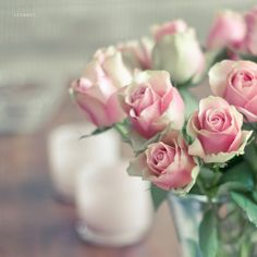 Cute as rose bouquet. Beautiful Roses, Pretty In Pink, Beautiful Flowers, Pink Roses, Pink Flowers, Roses Pinterest, Tres Belle Photo, Pink Images, Shabby Flowers