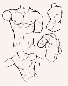 art reference Torso drawings - Anatomy - Drawing Drill Challenge by Smirking Raven Body Reference Drawing, Guy Drawing, Anatomy Reference, Drawing Poses, Art Reference Poses, Drawing People, Art Poses, Face Profile Drawing, Male Face Drawing