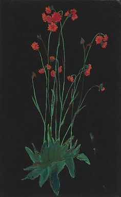 Red Flowers on Black - Elizabeth Bishop