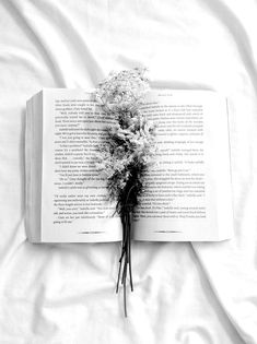 Read White Aesthetic from the story Colour/Aesthetic Themes by epiphanydjh (anna🌻) with reads. Black And White Aesthetic, Aesthetic Colors, Book Aesthetic, Black N White, Aesthetic Pictures, Athena Aesthetic, Aesthetic Light, Aesthetic Yellow, Black And White Flowers