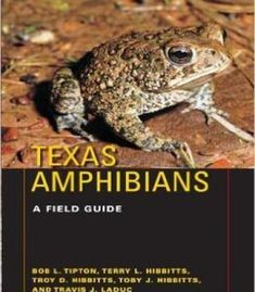 Texas Natural History Guides Texas Amphibians: A Field Guide PDF