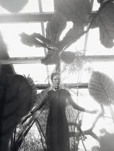 Jardin D'Hiver  Publication: Numéro April 2017  Model: Margo Millien  Photographer: Koto Bolofo  Fashion Editor: Rebecca Bleynie  Hair: Terry Saxon  Make Up: Houda Remita