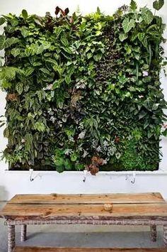 O jardim vertical está ganhando cada vez mais espaço nos projetos por ser uma linda opção de acabamento, por ajudar a purificar o ar e por ser uma boa alternativa para quem tem pouco espaço. Mas não pense que só quem mora em casas pode aderir a esse tipo de projeto. Você pode montar o...