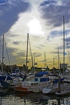 Find Paradise on the shore at Marina City Club in Marina Del Rey