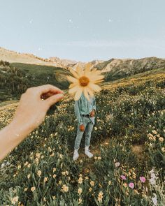 ideas flowers photography yellow spring – Everything for Nature Creative Photography, Photography Poses, Photography Flowers, Yellow Photography, Photography Hashtags, Tumblr Aesthetic Photography, Vintage Photography, Spring Photography, Wedding Photography