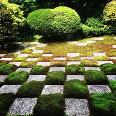 """The northern garden Square-cutted stones and moss are distributed in a small-sized chequered pattern. This garden faced on the """"Tsuten"""" bridge and gorge noted as an autumn-tinted valley """"Sengyokukan"""". Hojo-teien. moss garden designed by Mirei Kiritani. #Japan  #Kyoto #tofukuji #kiritanimirei"""