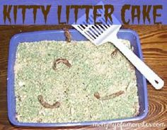 how to make a kitten use the kitty litter