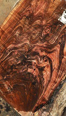 Natural edged slabs with amazing color and grain- Tasmanian Blackwood