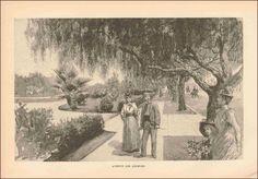LOS ANGELES Avenue, Shady Street, Antique Engraving, Print, Original 1890