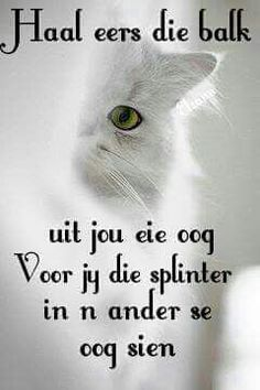 Afrikaans Sign Quotes, Words Quotes, Snappy Comebacks, Afrikaanse Quotes, Language, Messages, Writing, Reading, South Africa