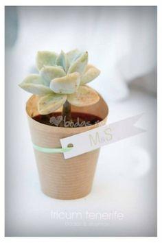 Foto de Tricum Tenerife Bodas y Eventos - http://www.bodas.net/organizacion-bodas/tricum-tenerife-bodas-y-eventos--e1394