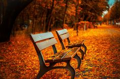 Beautiful Free Autumn Stock Photos for your Inspiration