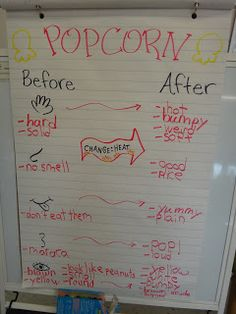 matter changes with heat, using 5 senses, LOVE this idea for a popcorn experiment!