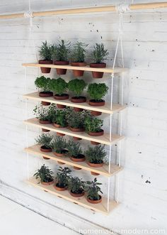 Your Space With A DIY Plant Stand or Planter Refresh Your Space With A DIY Plant Stand or Planter.great for herb garden?Refresh Your Space With A DIY Plant Stand or Planter.great for herb garden? Vertical Garden Diy, Vertical Gardens, Vertical Planter, Small Gardens, Modern Gardens, Verticle Garden Wall, Vertical Hydroponics, Hydroponic Gardening, Hanging Herbs