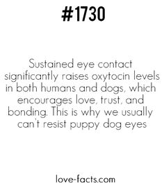 Did You KnowSustained eye contact significantly raises oxytocin levels in both humans and dogs, which encourages love, trust, and bonding. This is why we usually can't resist puppy dog eyes| Love Facts on Facebook