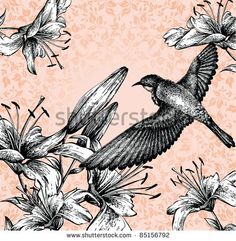 Background with a flying bird and blooming lilies hand drawing. vector - stock vector
