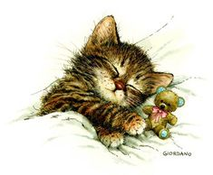 """Sleeping kitten with teddy bear. Support """"Southern California Cat Adoption Tails"""" www.catadoptiontails.com"""